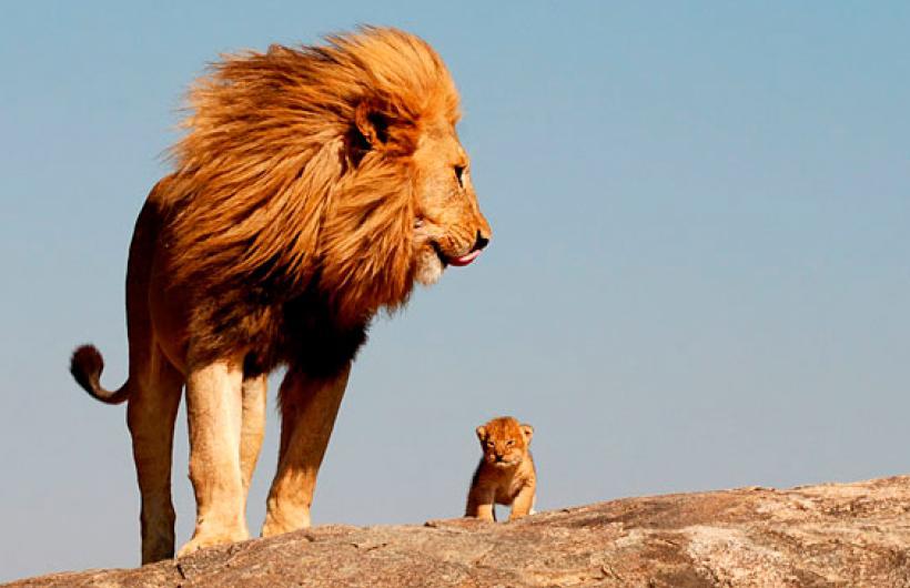 pobreza leon hijo